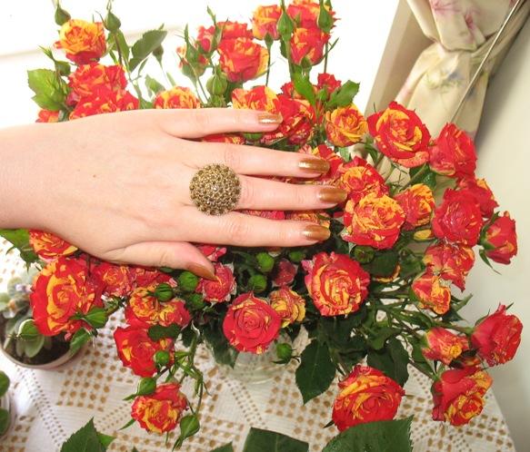 Golden Rose 318_f