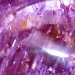 China Glaze CG-81245 Split Perso-Nail-Ity_reb18