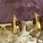 China Glaze CG-81245 Split Perso-Nail-Ity_rtb32