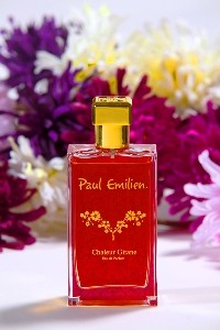 Paul Emilien - Chaleur Gitane