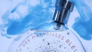 Hermes - Eau des Merveilles Bleue