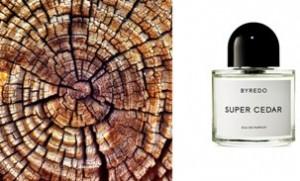 Byredo Parfums - Super Cedar