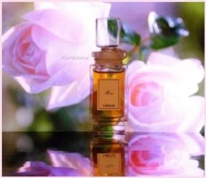 Caron - Rose