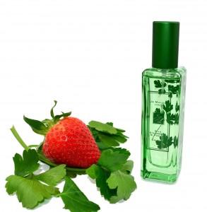 Jo Malone - The Herb Garden Wild Strawberry & Parsley