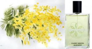 Von Eusersdorff - Classic Mimosa